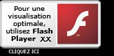 Télécharger Adobe Flash Player pour visualiser les visites virtuelles de sudpanorama.fr